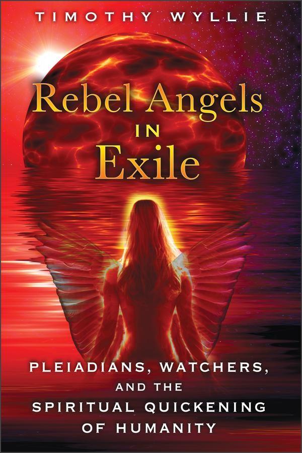 Rebel Angels in Exile by Timothy Wyllie